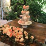 Rural wedding (4)